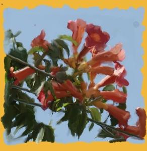 רקע פרחים